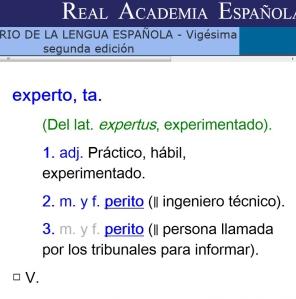 RAE_Experto