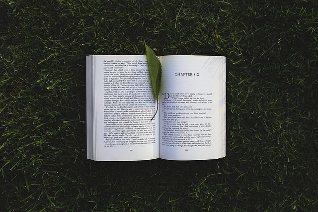 Qué leer