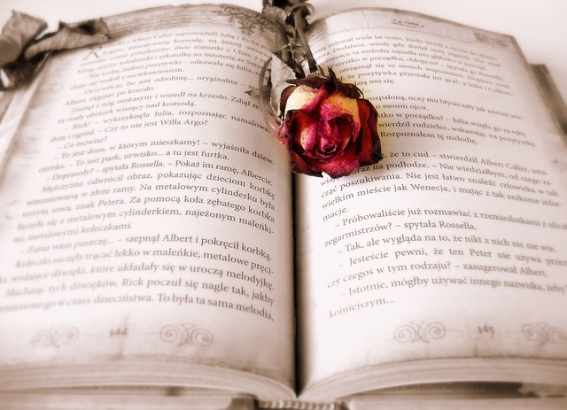 Libro_rosa