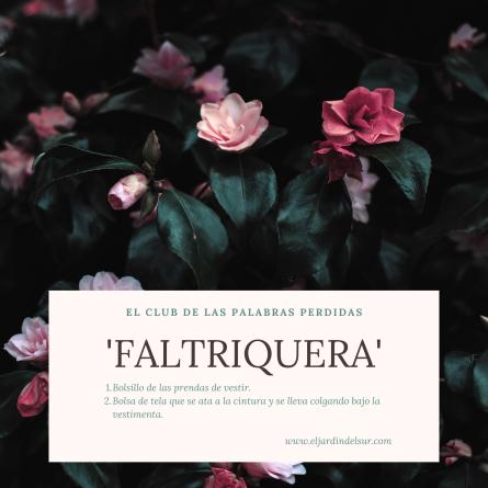 Faltriquera_EJDS