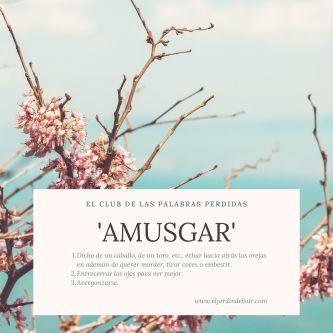 Amusgar_EJDS