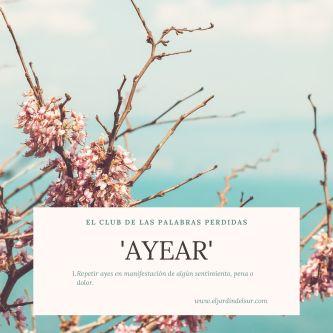 Ayear_EJDS
