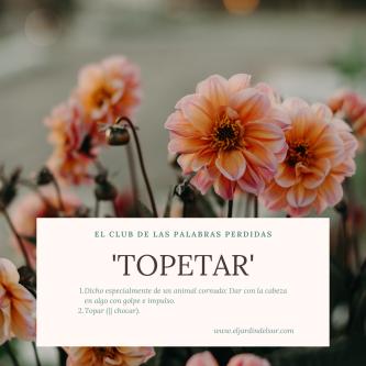 topetar_ejds